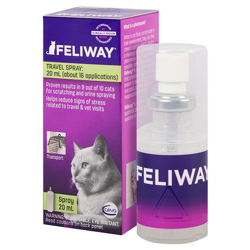 Cat Small indefinite quantity Pheromone