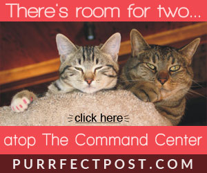 There's room for two in the Purrfect Post Command Center