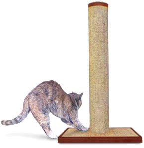 Sandarella Roo loves to scratch on the premium sisal scratching post