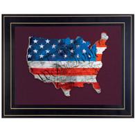 "TDAR135USA-B-704G - ""WTP American Flag"""