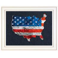 "TDAR135USA-G-226G - ""WTP American Flag"""