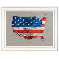 "TDAR135USA-E-226G - ""WTP American Flag"""