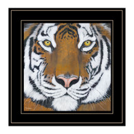 "BHAR464-704G  ""Tiger Gaze"""