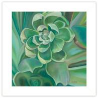 "EWAR215-226 ""Jade Succulent"""