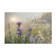 "LD1325-226  ""Bloom Where You are Planted"""