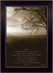 "DD523B-712  ""Life Is - Meadow"""