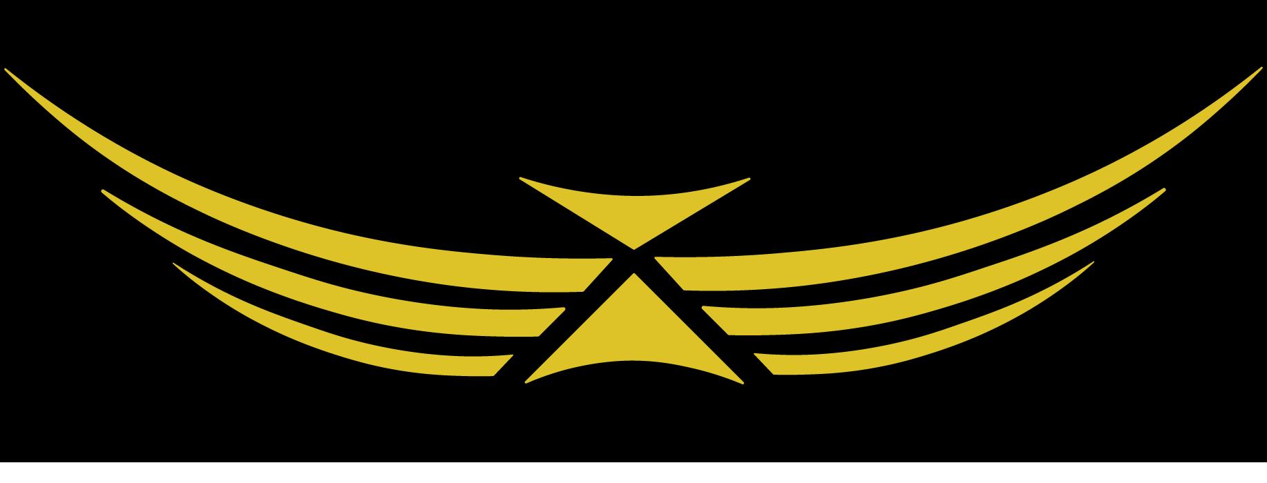 icarus-precision-logo-2021.png
