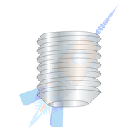 1/4-28 x 3/16 Fine Thread Socket Set Screw Flat Point Plain Imported