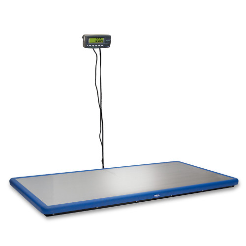 Blue-Line Wall Mount Scale, Standard Blue, Current model , not actual product for sale.