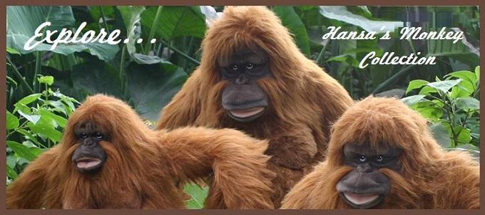 hansa-2-680w-monkey.jpg