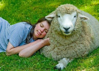 woolpets-laurieandhazel.jpg