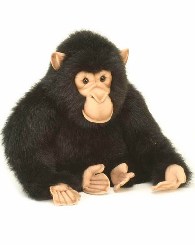 Hansa Chimp, Adult 18'' (1759)