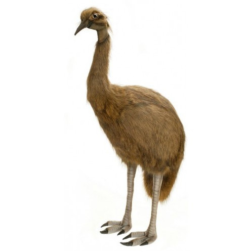 "Hansa Emu, Life Size 50"" (2676)"