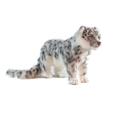 Hansa Snow Leopard, Standing (6514)