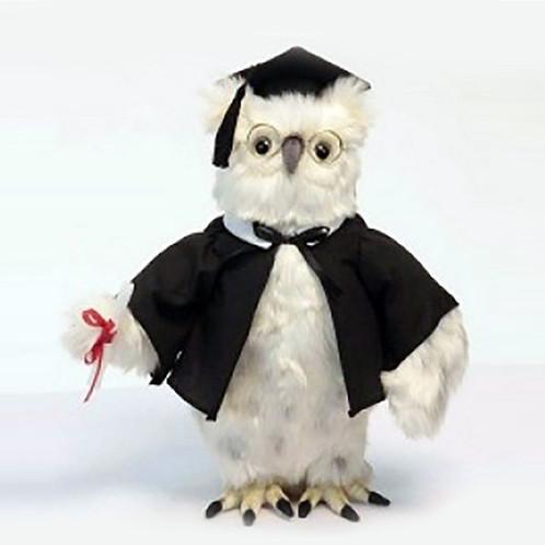 "Hansa Graduation Owl, 13"" (6005)"