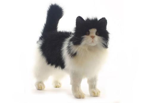 Hansa Black and White Cat (4221)