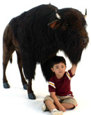 "Hansa Bison Buffalo Ride-on, 67''L x 47""H (5154)"