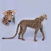 Hansa Cheetah, Life Size Jacqard Standing 50'' Long (6544)