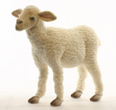 "Hansa Lamb, Baby Life Size 20""L x 20''H (4787)"