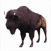 "Hansa Buffalo, Life Size 96''L x 72""H (4883)"