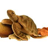 Hansa Sea Tortoise, 20''L (5072)