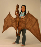 Hansa Pterodactyl, 4 Foot Wingspan (5111)