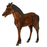 "Hansa Thoroughbred Foal, 39""L x 39""H (5448)"