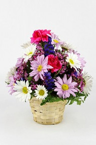 "5"" Seasonal Flower Basket"