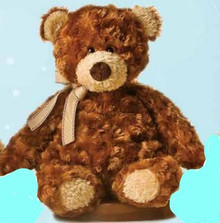 "12""  Puddin Bear soft and Cuddly"