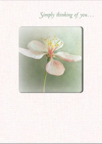 Thinking of You greeting card.  Please notate message in the comments section at checkout.