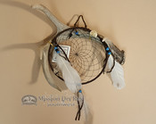Genuine Antler with Colored Web Dreamcatcher- Black