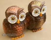 "Southwestern Salt & Pepper Shakers 5"" - Owls"