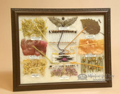 Plants used as natural dyes in weaving