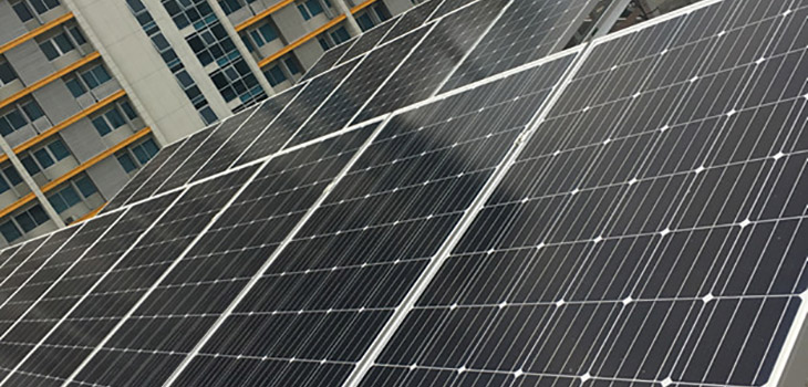 longi-solar-array.jpg