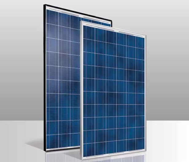 Conergy Ph 255p Black Frame 255w Poly Solar Panel Solaris