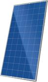 CS6X-325P