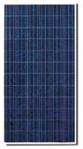 CS6X-310P