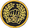 Tang Soo Do Patch (Gold)