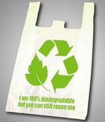 Large Biodegradable Carry Bags