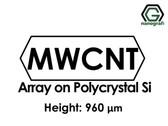 Çok Duvarlı Karbon Nanotüp - Polikristal Silikon Üzerinde Sıralanmış, Yükseklik: 960um
