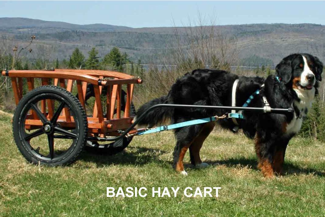 Hay Dog Carts Starting at