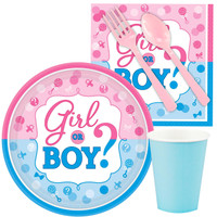 Gender Reveal Snack Party Pack