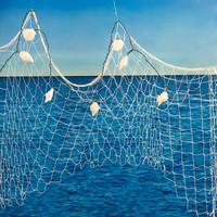 Ocean Sea Life Backdrop Decoration Kit