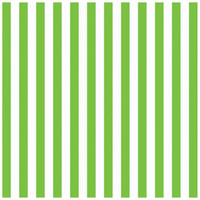 Kiwi Stripe Jumbo Gift Wrap 16ft