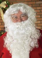 Economy Santa Beard & Wig Set Adult