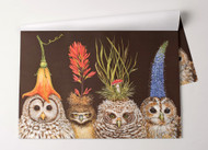 Kitchen Paper - Baby Owls Placemats