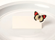 Kitchen Paper - Butterfly Placecards