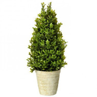 "Potted Spring Boxwood Cone Topiary, 16"" Artificial"