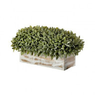"Potted Flocked Sage Rectangular Centerpiece In Wood Box, 16"" Artificial"