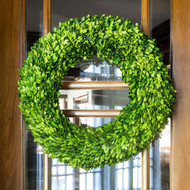 "24"" Park Hill Preserved Boxwood Wreath"